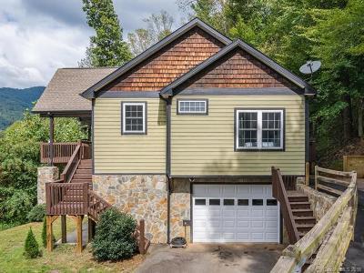 Asheville Single Family Home For Sale: 17 Bull Creek Road