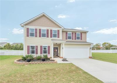 Indian Trail Single Family Home For Sale: 1023 Blue Stream Lane