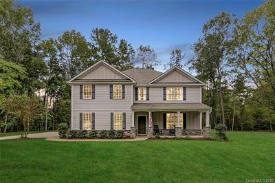 Matthews Single Family Home For Sale: 3107 Twelve Mile Creek Road #3