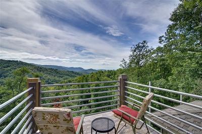 Transylvania County Single Family Home For Sale: 114 N Eastatoe Gap Road #16 &