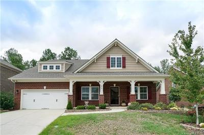 Rock Hill Single Family Home For Sale: 379 Village Loop Drive