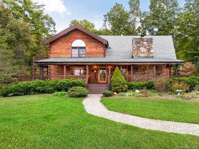 Bat Cave, Chimney Rock, Lake Lure, Gerton, Black Mountain, Mill Spring, Rutherfordton, Columbus, Tryon, Saluda, Union Mills, Hendersonville Single Family Home For Sale: 461 Mark Freeman Road