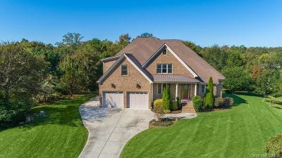 Lake Wylie Single Family Home Under Contract-Show: 230 Daybreak Bay Court