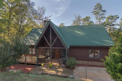 Bat Cave, Black Mountain, Chimney Rock, Lake Lure, Rutherfordton, Union Mills, Mill Spring, Columbus, Tryon, Saluda Single Family Home For Sale: 587 Pheasant Street