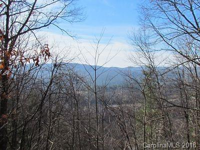 Hendersonville Residential Lots & Land For Sale: 1018 Willow Ridge Drive