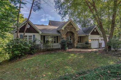 Asheville Single Family Home For Sale: 618 Vista View Drive