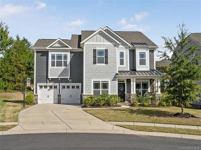 Fort Mill Single Family Home For Sale: 824 Bridge View Court
