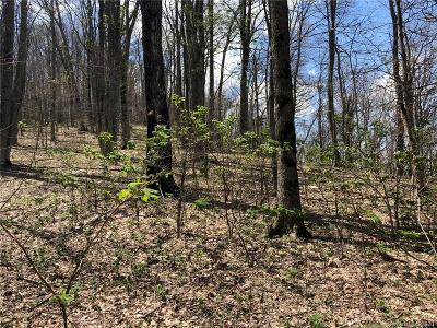 Buncombe County, Haywood County, Henderson County, Madison County Residential Lots & Land For Sale: Presidential Drive