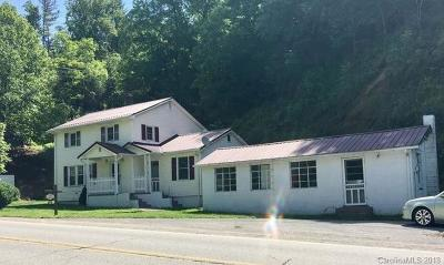 Alexander County, Caldwell County, Ashe County, Avery County, Watauga County, Burke County Single Family Home For Sale: 2990 Us 19e Highway