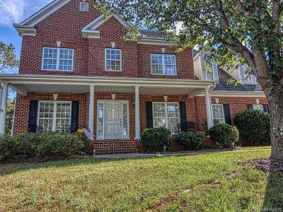 Huntersville Single Family Home For Sale: 10204 Edgecliff Road
