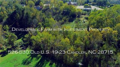 Candler Single Family Home For Sale: 526 & 530 Old Us 19 23 Highway