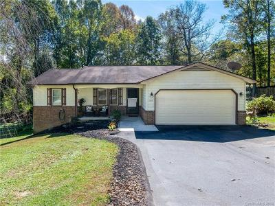 Hendersonville Single Family Home For Sale: 131 Apache Drive