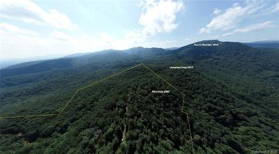 Black Mountain Residential Lots & Land For Sale: 79 +/- Acres Camp Elliott Road