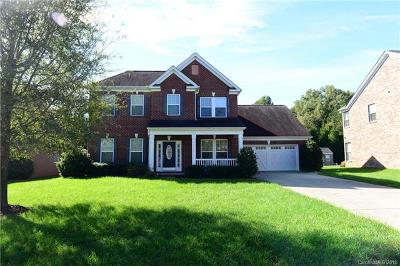 Mint Hill Single Family Home For Sale: 7719 Monogramm Lane