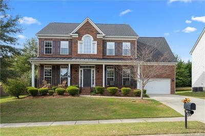 Fort Mill Single Family Home For Sale: 613 Alsace Lane