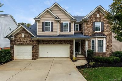 Waxhaw Single Family Home For Sale: 8212 Brisbin Drive