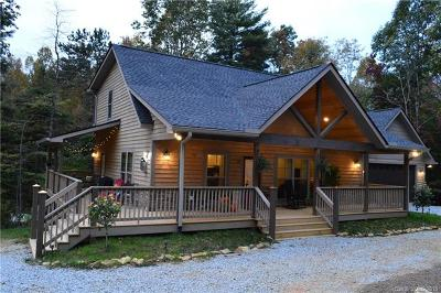 Hendersonville Single Family Home For Sale: 33 Drake Mountain Lane #3