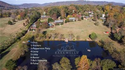 Mills River NC Commercial For Sale: $3,950,000