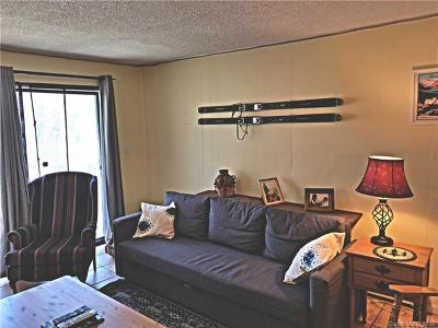 Condo/Townhouse For Sale: 103 Mid Holiday Lane #D-115