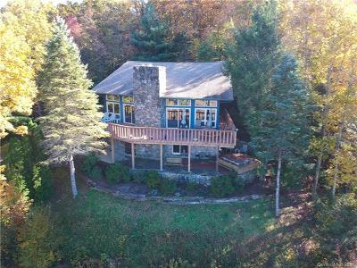 Black Mountain Single Family Home For Sale: 250 Holland Drive