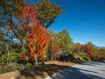 Mills River Residential Lots & Land For Sale: Lot 113 Blue Mountain Way