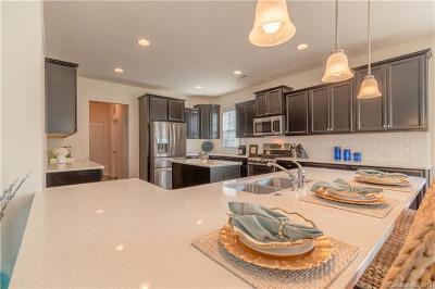 Cornelius Single Family Home For Sale: 12312 Cranberry Glades Drive #76