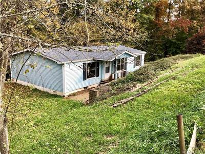 Weaverville Single Family Home For Sale: 201 New Covenant Drive #1
