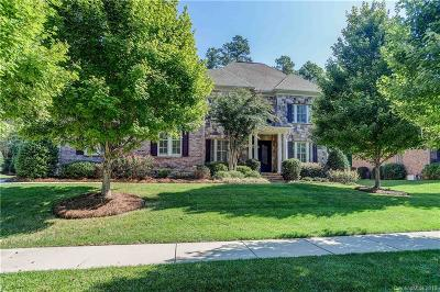 Huntersville Single Family Home Under Contract-Show: 13040 Long Common Parkway