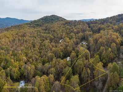 Waynesville Residential Lots & Land For Sale: #412 Kitty Lane
