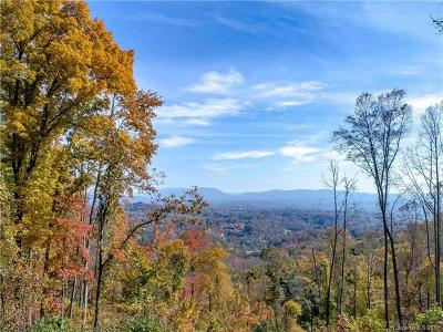 Candler Residential Lots & Land For Sale: 99999 Mouchie Mountain Road #B