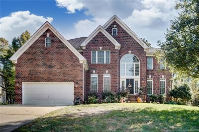 Statesville, Charlotte, Mooresville Single Family Home For Sale: 11538 Shimmering Lake Drive #259