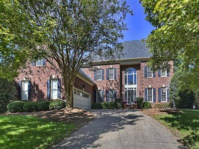 Charlotte Single Family Home For Sale: 15809 Strickland Court