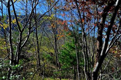Lake Lure Residential Lots & Land For Sale: Marina Drive