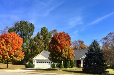 Fletcher Single Family Home Under Contract-Show: 223 Planters Creek Road