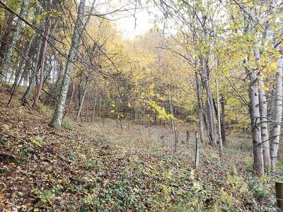 Waynesville Residential Lots & Land For Sale: Woodmore Road