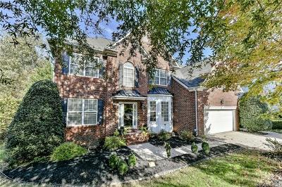 Charlotte Single Family Home For Sale: 1045 Anduin Falls Drive