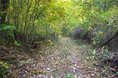 Leicester Residential Lots & Land For Sale: Pinnacle Mountain Road