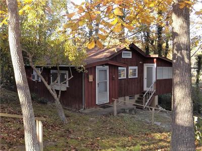 Bat Cave, Chimney Rock, Lake Lure, Gerton, Black Mountain, Mill Spring, Rutherfordton, Columbus, Tryon, Saluda, Union Mills, Hendersonville Single Family Home For Sale: 30 Mason Dixon Lane