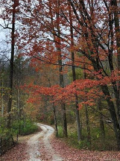 Bat Cave, Black Mountain, Chimney Rock, Columbus, Gerton, Lake Lure, Mill Spring, Rutherfordton, Saluda, Tryon, Union Mills Residential Lots & Land For Sale: 99999 Heavens Gate Road #A1A