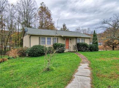 Hendersonville Single Family Home For Sale: 859 Stoney Mountain Road