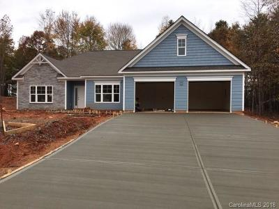 Troutman Single Family Home For Sale: 137 Windstone Drive #9