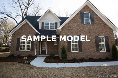 Concord Single Family Home For Sale: 235 Brook Avenue SE #52