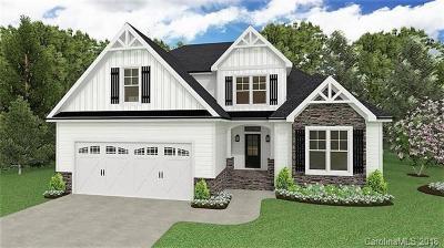 Concord Single Family Home For Sale: 251 Brook Avenue SE #48