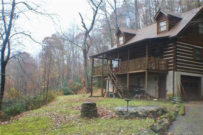 Fairview Single Family Home For Sale: 48 Buck Ridge Road