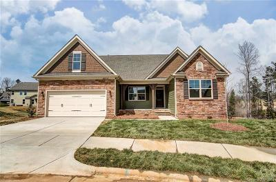 Kannapolis Single Family Home For Sale: 4812 Laymore Lane #Lot 172