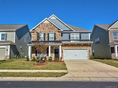 Fort Mill, Rock Hill Single Family Home For Sale: 2387 Palmdale Walk Drive