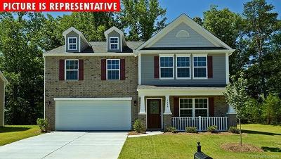 Mooresville Single Family Home For Sale: 110 Longleaf Drive #142