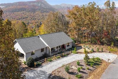 Bat Cave, Black Mountain, Chimney Rock, Columbus, Gerton, Lake Lure, Mill Spring, Rutherfordton, Saluda, Tryon, Union Mills Single Family Home For Sale: 177 Hillview Drive