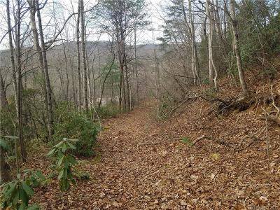 Henderson County Residential Lots & Land For Sale: Carpenters Son Lane