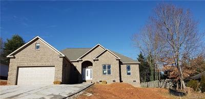Hickory Single Family Home For Sale: 617 Catawba Valley Boulevard